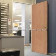 Plywood Door (2)